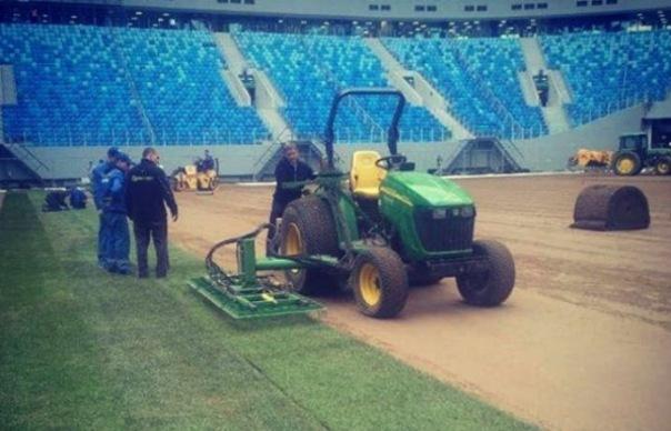 В Гатчине выращивают запасной газон для Зенит-арены на ЧМ-2018