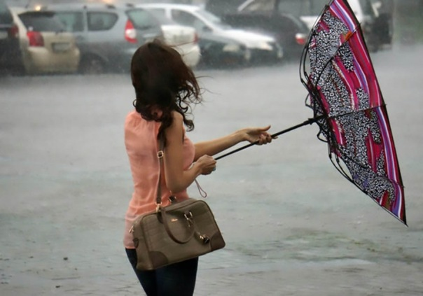 МЧС предупреждает петербуржцев о сильном ветре во вторник