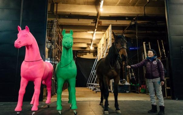 Конь вышел на театральную сцену в Петербурге